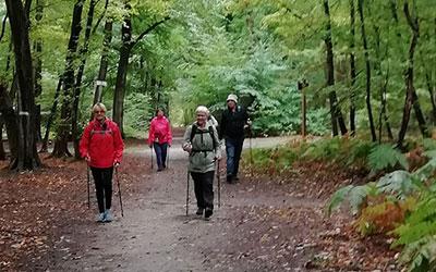 Marche forêt de St germain